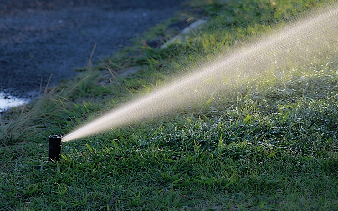 How Smart Irrigation Leads to Saving Money and Helping the Environment